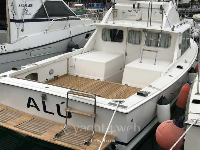 Bertram yacht 31