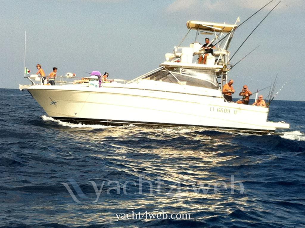 Cayman Walk aroundtip top tuna tower