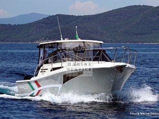 Tuccoli boats T280 ht fuoribordo