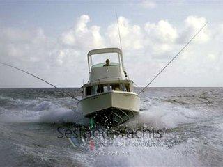 Bertram yacht 25 caribbean