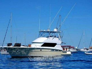 Hatteras yachts Hatteras 50 convertible