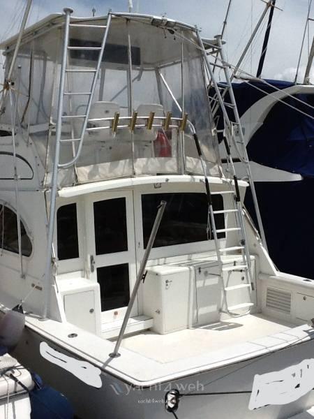 Egg Harbor Yacht Golden egg 38