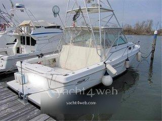 Boston Whaler 34 defiance