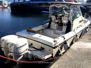 Grady white 25 sailfish