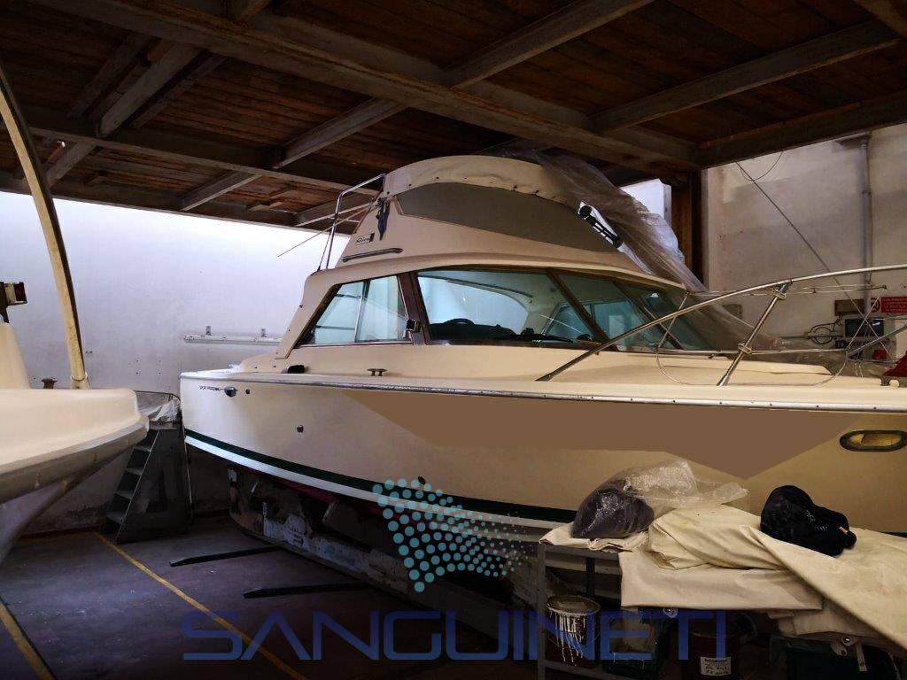 RIVA Bertram 25 motor boat
