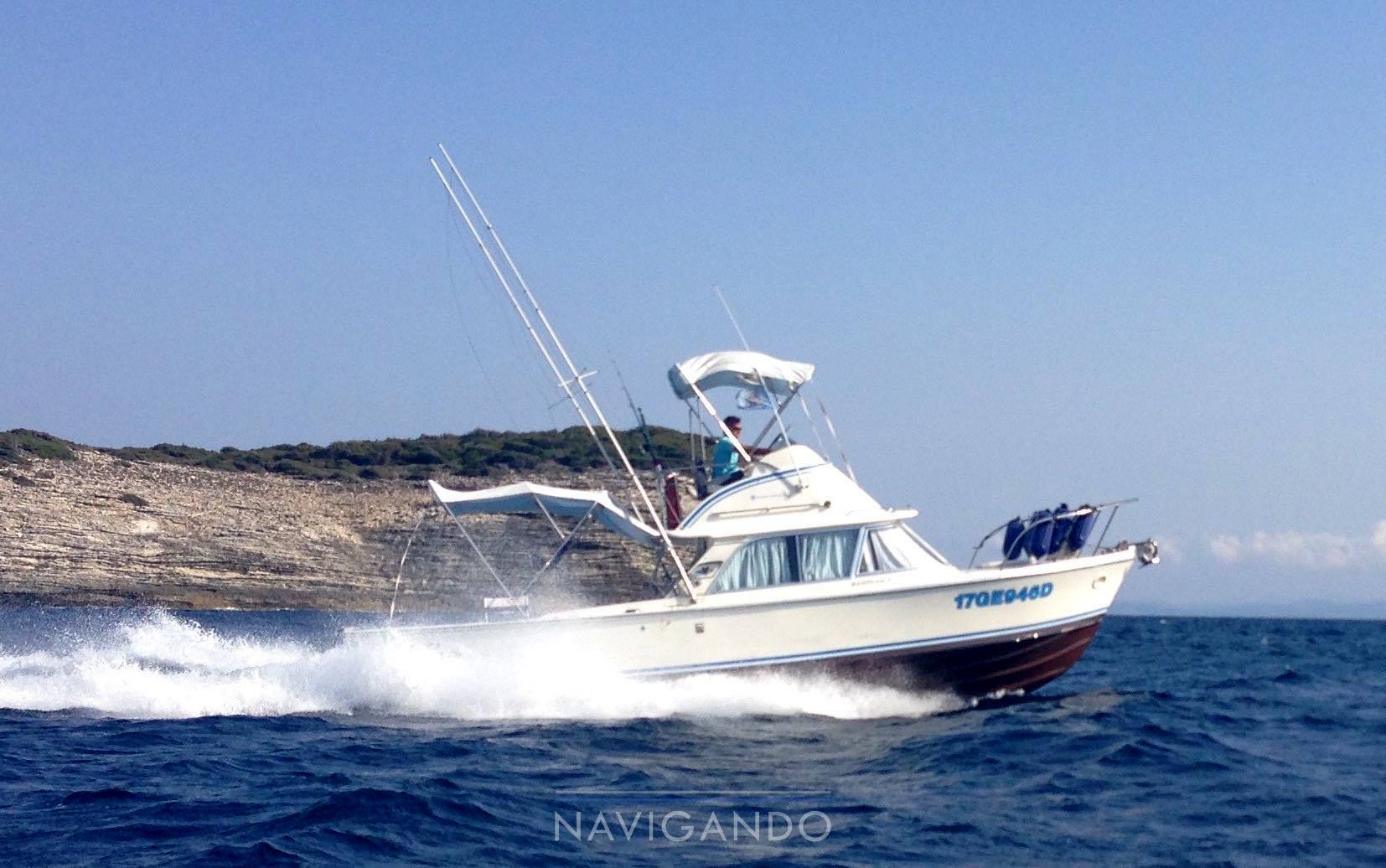 Bertram 31 fly Motor boat used for sale