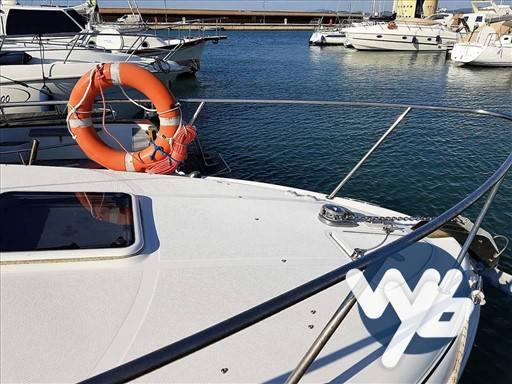 Sea Ray Boats Sundancer 315 barca a motore