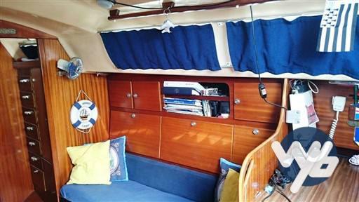 Contest Yacht 29 usato