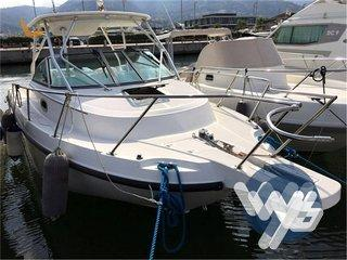 Boston Whaler Conquest 275 USATA
