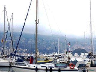 Contest yacht 29