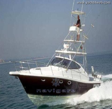 Cantiere Gregorini Di max 37 h.t. con tuna Motor boat new for sale