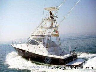 Cantiere gregorini Di max 37 h.t. con tuna